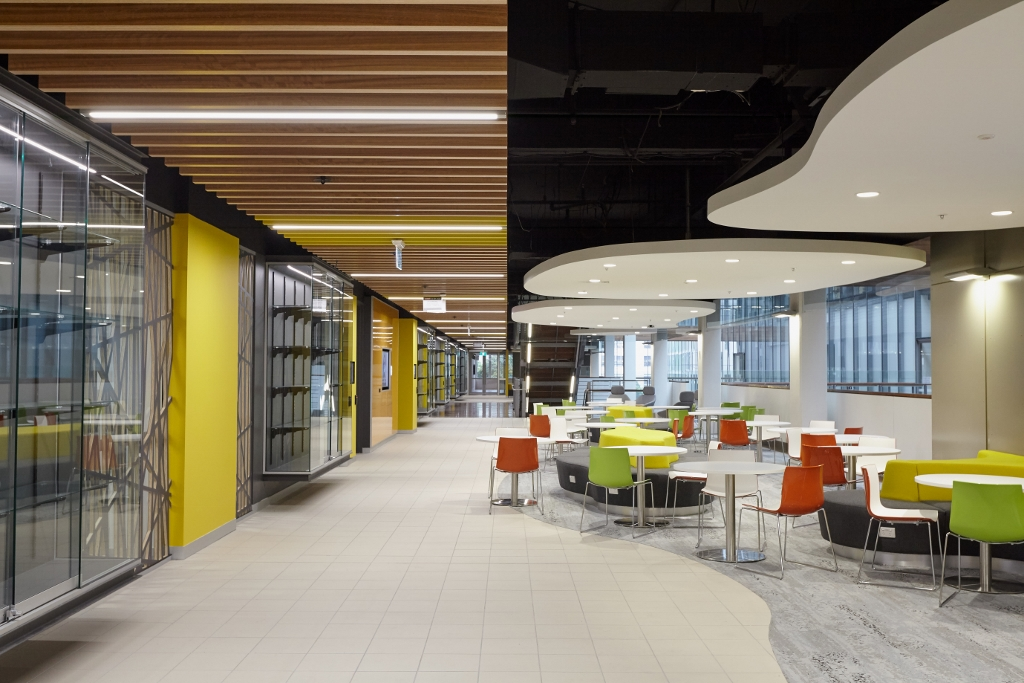 Blending Architecture, Education + Innovation at UTS